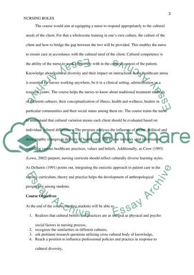 Course: Nursing Roles in a Diverse Culture essay example