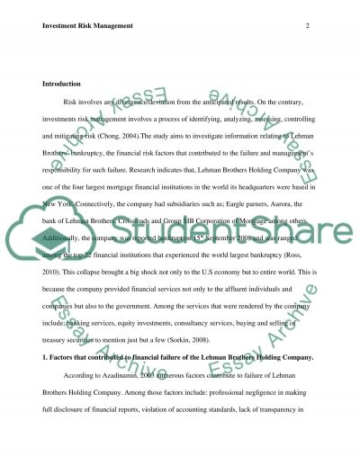 Investment Risk Management essay example