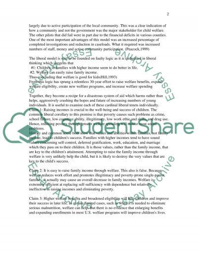 Child Welfare Policies essay example