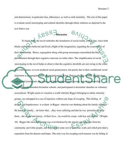 Native Son Racial Stereotypes And Ethnic Profiling Essay Native Son Racial Stereotypes And Ethnic Profiling Need Help Writing Business Plan also Argumentative Essay High School  Custom Speech Writers