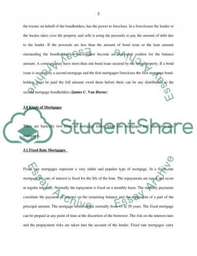 Derivative Investment essay example