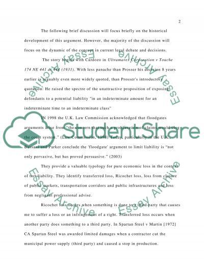 Tort Assignment essay example