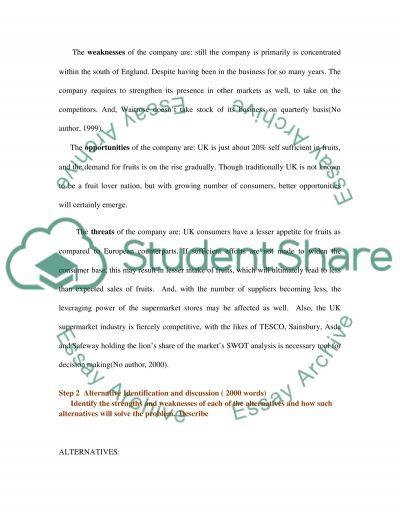Strategic Marketing Essay essay example