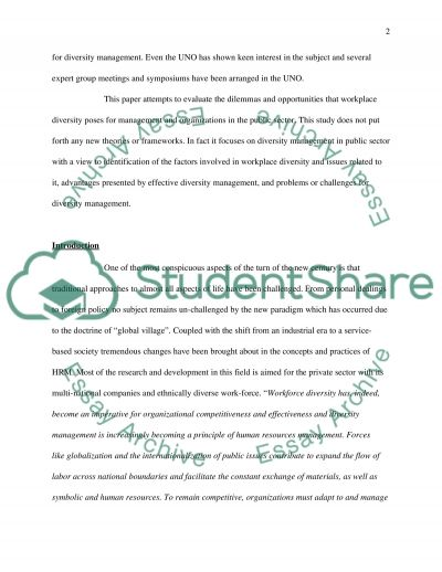 Workplace Diversity essay example