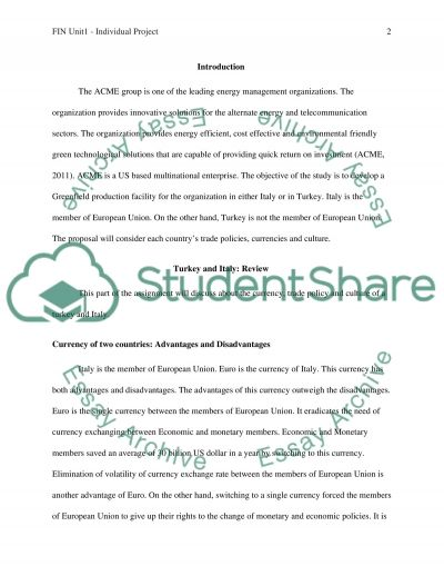 FIN Unit1 - Individual Project essay example