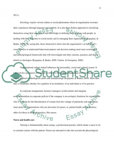 Nursing assigment: Organizational culture; Nurse and health care; Leadership and culture Essay example