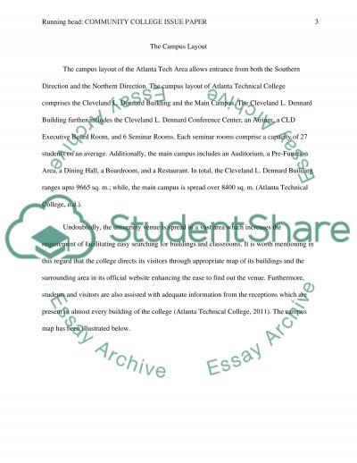 Community College Issue Paper essay example
