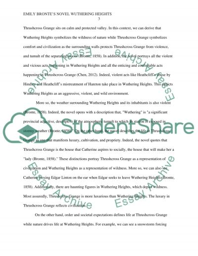 emily bronts novel wuthering heights essay example - Novel Essay Example