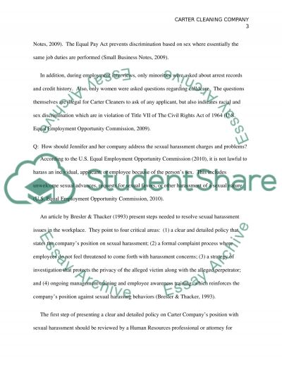 Carter Cleaning Co. Case Study essay example