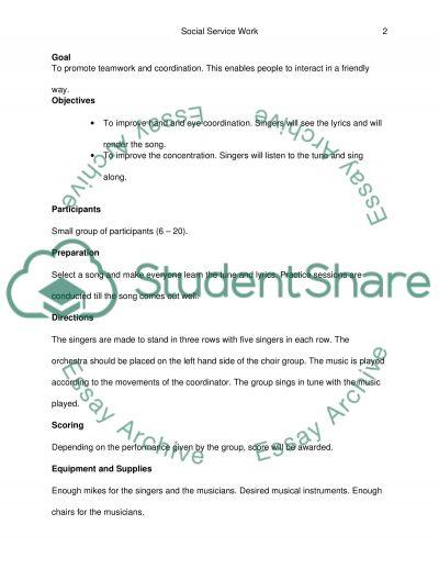 Social Service essay example