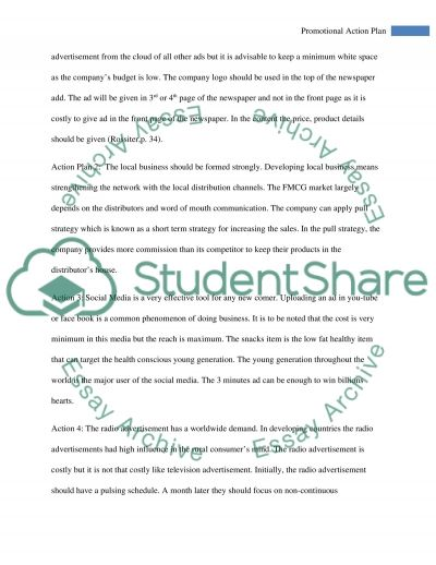 Marketing Action Plan essay example