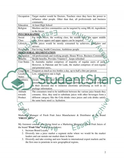 Establish & Adjust the markerting mix essay example