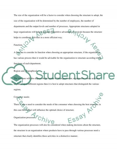 Organization Structure and Strategies essay example