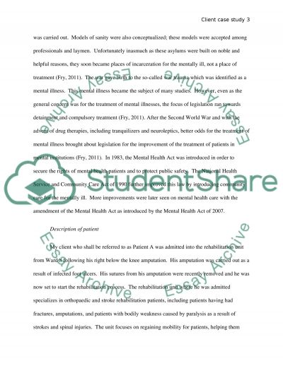 The Social Context of Ethical Practice in Mental Health Care essay example