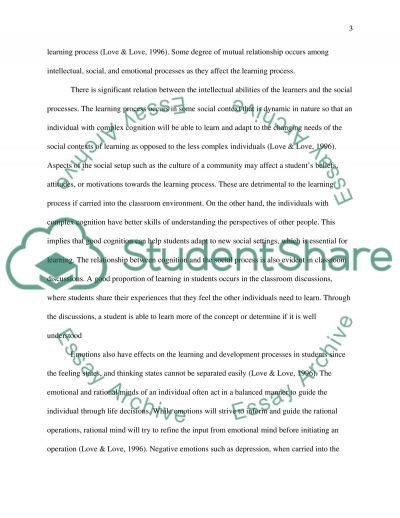 Language Acquisition and Various Influences on Student Learning essay example