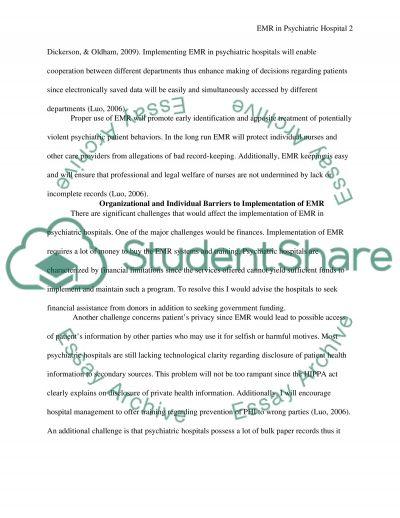 Organizational Plan Implementation I essay example