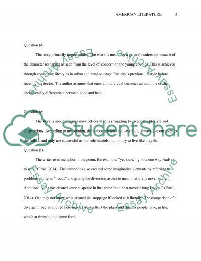 American Literature essay example
