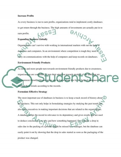 Computer Information System essay example