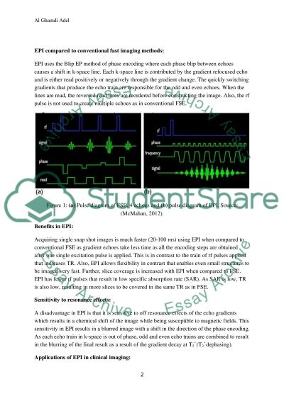 BLIP Echo Planar Imaging Method essay example