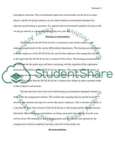Risk Assessment Audit essay example