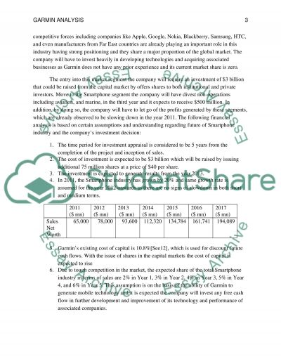 Garmin Analysis - Looking To the Future essay example