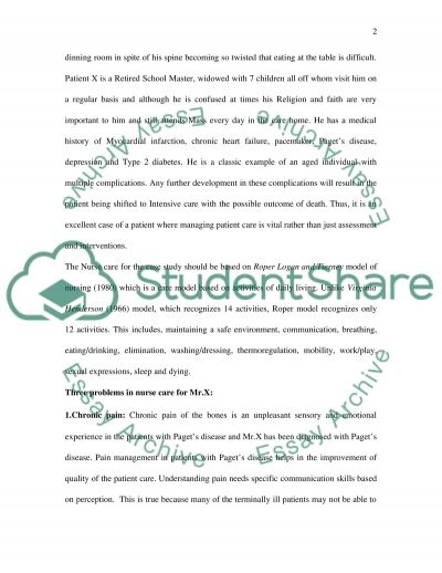 The Nursing profession essay example
