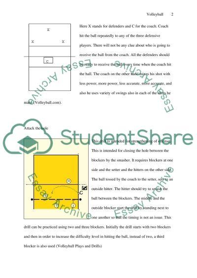 Volly 2 essay example