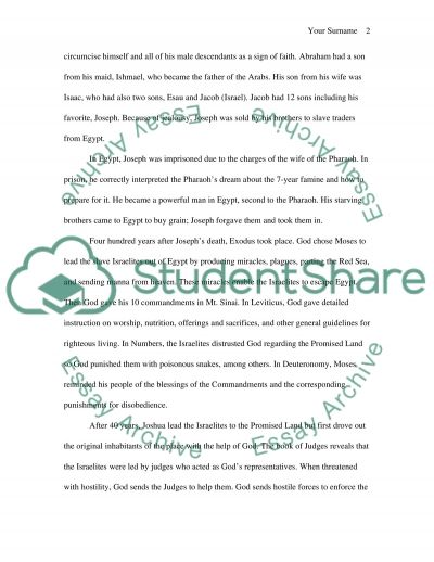 Bible Story essay example