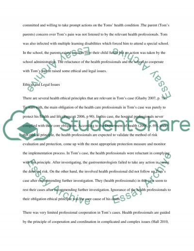 Interprofessional team working in healthcare delivery essay example