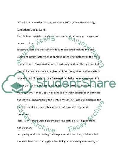 Rich Pictures and Use Cases as analysis tool essay example