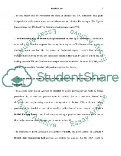 Public Law (Human Rights) essay example