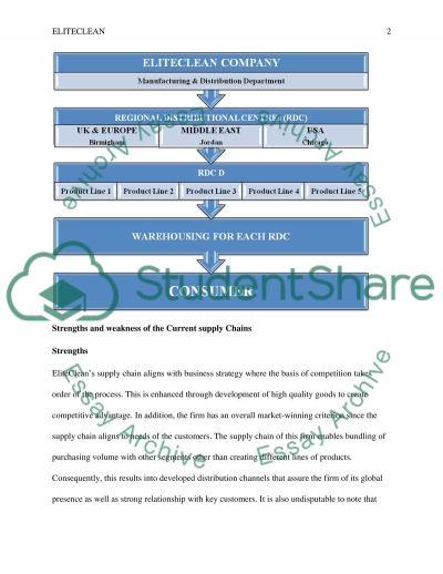 ELITE CLEAN business essay essay example