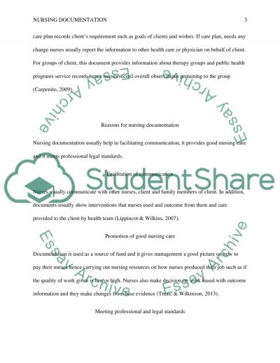 Nursing Documentation essay example