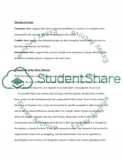 Criminology essay example