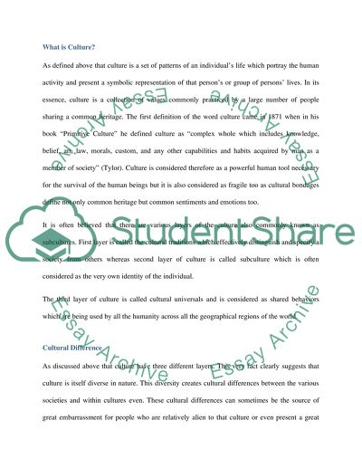 what is culture essay