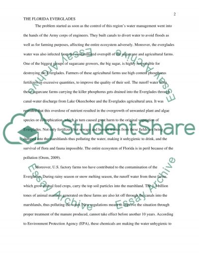 Sculpturing the Earths Surface. The Florida Everglades essay example