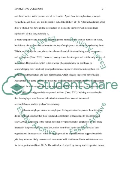 Marketing Questions essay example