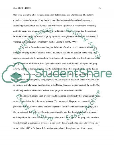 Gang Culture Essay essay example