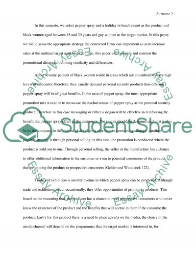 Promotion Strategies Essay example