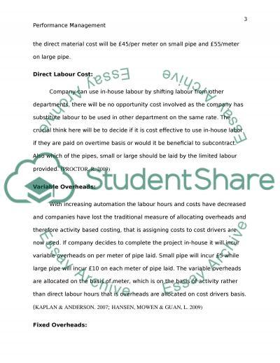 Performance Management essay example