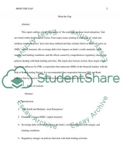 Mind the Gap essay example