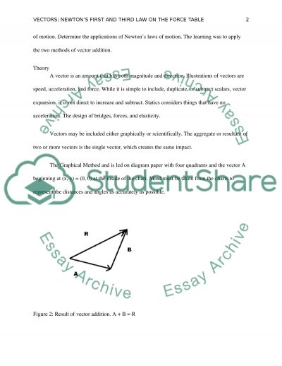 Vector and Statics essay example