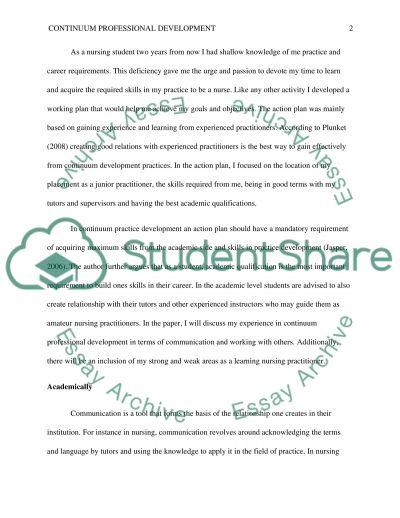 Reflective essay. Professional development