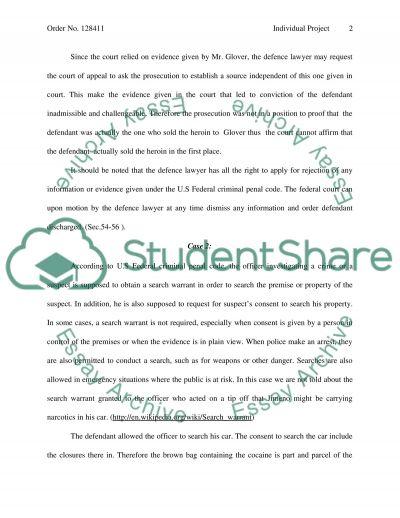 Individual Project Essay essay example