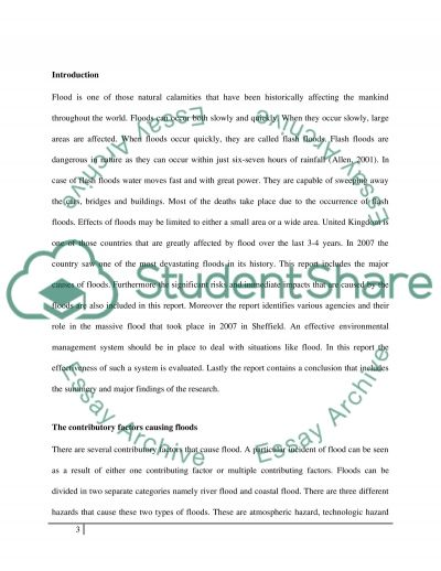 Environmental Management essay example