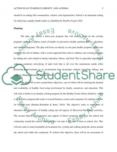 Community Plan, Implementation and evaluation essay example