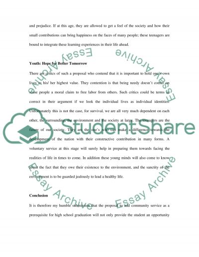 Community Service essay example