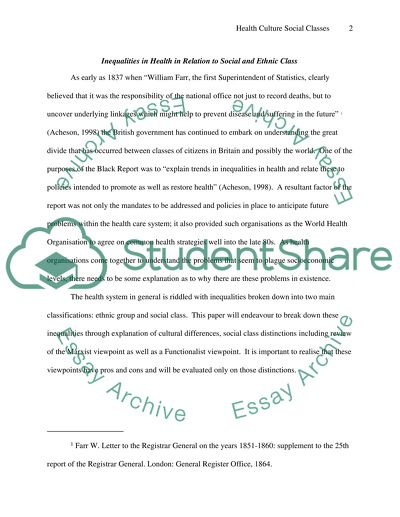 Health Culture Social Classes Essay Example  Topics And Well  Health Culture Social Classes  Essay Example