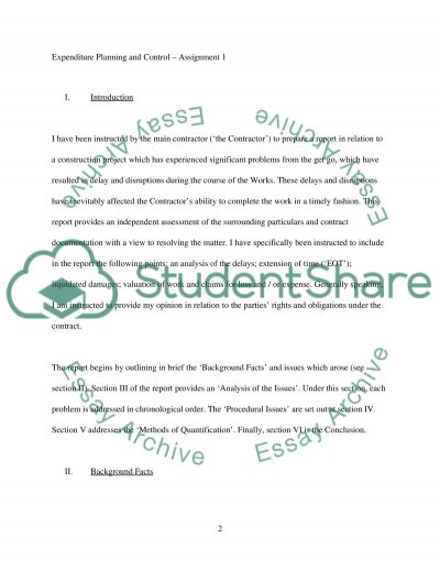 EXPENDITURE PLANNING AND CONTROL essay example