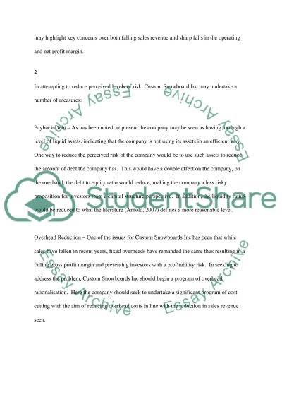 Financial Report for Custom Snowboards Inc essay example